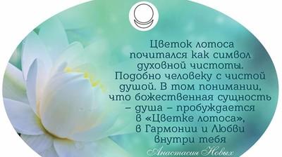 """Магнитик-открытка """"Цветок лотоса почитался как символ духовной чистоты. Подобно человеку с чистой душой."""""""