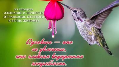 Мотиватор. Духовное - это не увлечение, это главная внутренняя потребность.