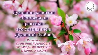 Мотиватор. Духовное развитие Личности на практике - это созидание в Духовной Любви