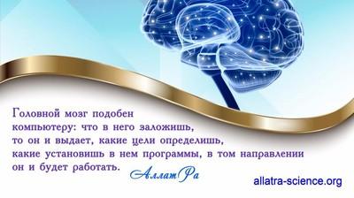 Мотиватор. Головной мозг подобен компьютеру: что в него заложишь, то он и выдаёт.