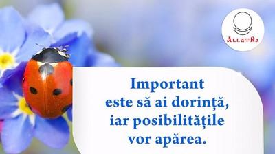 """Мотиватор """"Important este să ai dorinţă iar posibilităţile vor apărea."""""""