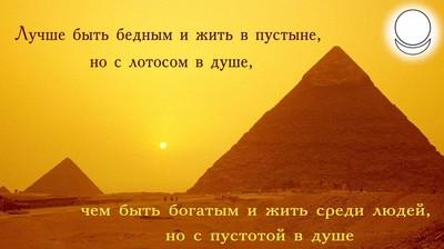 Мотиватор. Лучше быть бедным и жить в пустыне, но с лотосом в душе