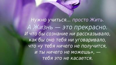 Мотиватор. Нужно учиться...просто Жить. А Жизнь - это прекрасно.