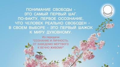 Мотиватор. Понимание свободы - это самый первый шаг.