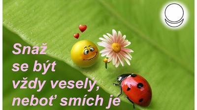 """Мотиватор """"Snaž se být vždy veselý, nebot' smich je kořen života"""""""