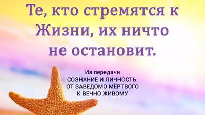 Мотиватор. Те, кто стремится к Жизни, их ничто не остановит.
